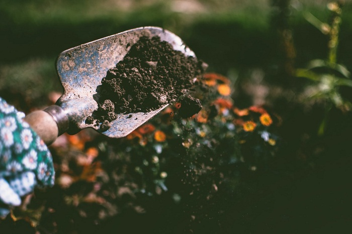 Les 8 meilleurs engrais de jardin faits maison